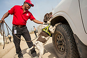 &quot;I like my job because I love dogs and love working with them. I have a background in security, but working with dogs is what I really love,&quot; &ndash; Suresh Pradhan, UNMAS Explosive Detection Dog Handler and Astar, a six-year old English Springer Spaniel.<br />