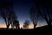 (01-18-09 -- 30 days of dawn)     ..