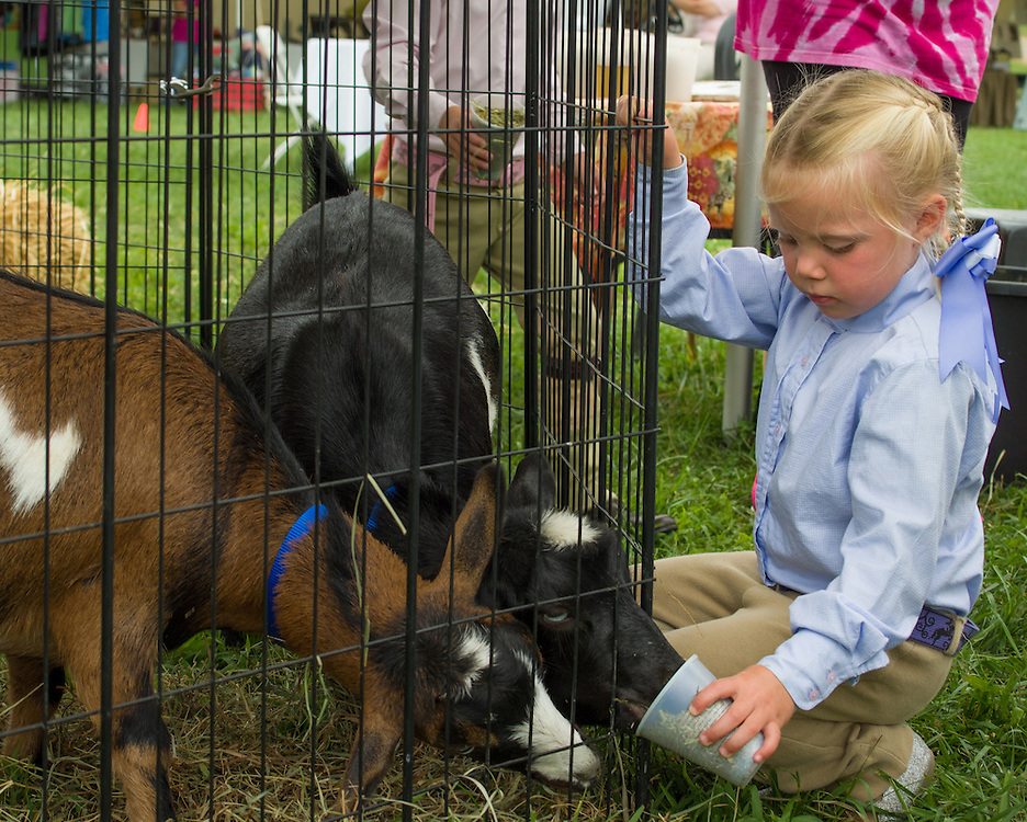 Family Fun at Ludwig's Corner Horse Show