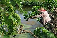 China Sustainable Fishing