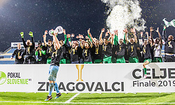 NK Olimpija  celebrate after a football game between NK Olimpija Ljubljana and NK Maribor in Final Round (18/19)  of Pokal Slovenije 2018/19, on 30th of May, 2014 in Arena Z'dezele, Ljubljana, Slovenia. Photo by Matic Ritonja / Sportida