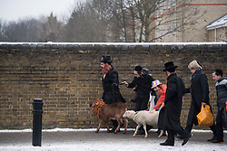 © Licensed to London News Pictures. 01/03/2018. London, UK. A group of Orthodox Jewish children in fancy dress, led by a man and two goats, celebrate the festival of Purim on the streets of Stamford Hill in north London on March 1, 2018. Purim celebrates the miraculous salvation of the Jews from a genocidal plot in ancient Persia, an event documented in the Book of Esther. Traditionally the jewish community wear fancy dress and exchange reciprocal gifts of food and drink. Photo credit: Ben Cawthra/LNP