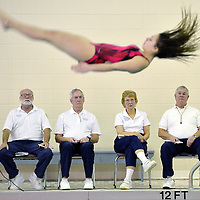 District 10 officials watch as Fairview diver Amanda Doleski competes at the North East Invitational at North East on Jan. 9. ANDY COLWELL/