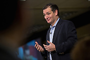 U.S. Senator Ted Cruz speaks to supporters at the South Carolina Tea Party Coalition convention on January 18, 2015 in Myrtle Beach, South Carolina. A variety of conservative presidential hopefuls spoke at the gathering on the third day of a three day event.
