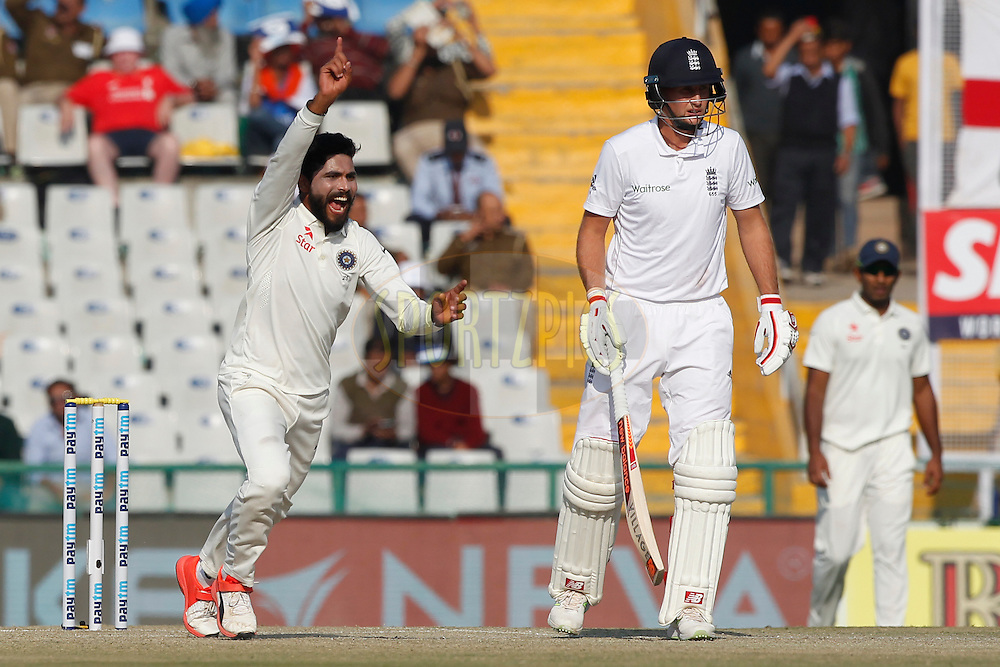 Ravindra Jadeja of India unsuccessfully appeals against Alastair Cook Captain of England during day 3 of the third test match between India and England held at the Punjab Cricket Association IS Bindra Stadium, Mohali on the 28th November 2016.<br /> <br /> Photo by: Deepak Malik/ BCCI/ SPORTZPICS