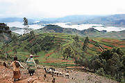 The Bunyonyi Lake and Kabale region of Uganda taken from the treacherous Bunyonyi Road.
