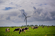 NOP Agrowind, energiebedrijf RWE Essent en Westermeerwind exploiteren een windpark op land en in het water van het IJsselmeer. De stroomproducent bouwde hier windmolens die 5 megawatt op land, en 3 megawatt op zee produceren. Siemens leverde turbines.  winmolens en winmolen en koeien in de wei , ROBIN UTRECHT
