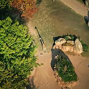 SERENGETI SAVANA, unico habitat in Italia multi-specie (ovvero dove convivono e interagiscono differenti specie animali in un unico ambiente) dedicato agli erbivori e ai volatili della savana africata, interamente visitabile a piedi.<br /> <br /> ZOOM Torino è un bioparco immersivo, una struttura unica sul territorio nazionale che segue la filosofia della Landscape Immersion. Niente reti, gabbie e cancelli, ma cespugli e vasche d'acqua, per un viaggio emozionante attraverso l'Africa e l'Asia durante il quale vedere gli animali rappresentativi di queste zone davvero da vicino e in contesti naturali che riproducono le ambientazioni dei due continenti simbolo di biodiversità.<br /> <br /> ZOOM Turin is an immersive bioparco a unique place in the national territory that follows the philosophy of Landscape Immersion. No nets, cages and gates, but bushes and ponds, for an exciting journey through Africa and Asia during which see the animals representative of these areas really up close and in natural contexts that reproduce the settings of the two continents symbol of biodiversity