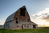 Schwartz Barn
