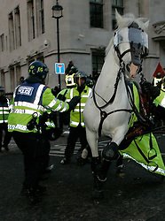 ©under license to London News Pictures. 09/12/2010 - The 4th wave of student protests in London. Students protest against  plans to raise student tuition fees.Police's horse is out of the control crazy during todays protest   photo credit should be read as: Michael Zemanek / LNP