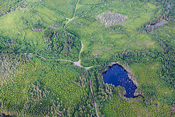 Logging roads and a small pond in the Cold Stream watershed in industrial timberland in Maine's Northern Forest.