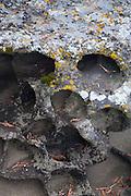 Eroded Rock Face, Gossip Island, San Juan Islands, Washington, US