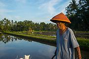 Subak irrigation rice images taken, on February 2017 in Tabanan, Bali, Indonesia