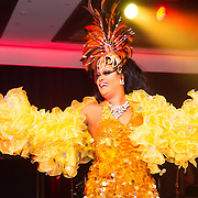 Diversity Ball 2015 - Entertainment