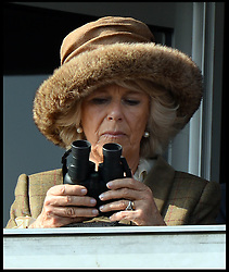 The Duchess of Cornwall watching  the first race at the Cheltenham Festival Ladies Day. Cheltenham Racecourse, Cheltenham, United Kingdom. Wednesday, 12th March 2014. Picture by Andrew Parsons / i-Images