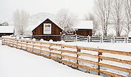 20110206 Chatfield Snow