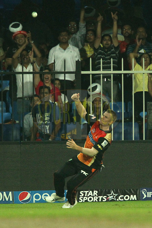 David Warner of the Sunrisers Hyderabad celebrates having taken the catch to dismiss Dwayne Smith of The Chennai Superkings during match 17 of the Pepsi Indian Premier League 2014 between the Sunrisers Hyderabad and the Chennai Superkings held at the Sharjah Cricket Stadium, Sharjah, United Arab Emirates on the 27th April 2014<br /> <br /> Photo by Ron Gaunt / IPL / SPORTZPICS