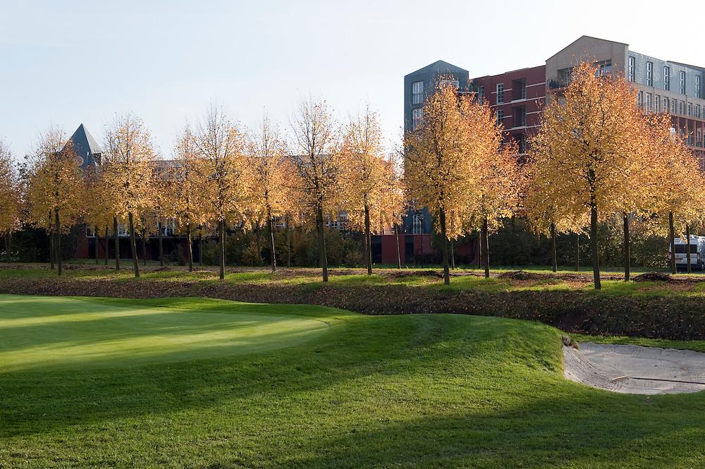 Bomenrij bij golfbaan Haverleij