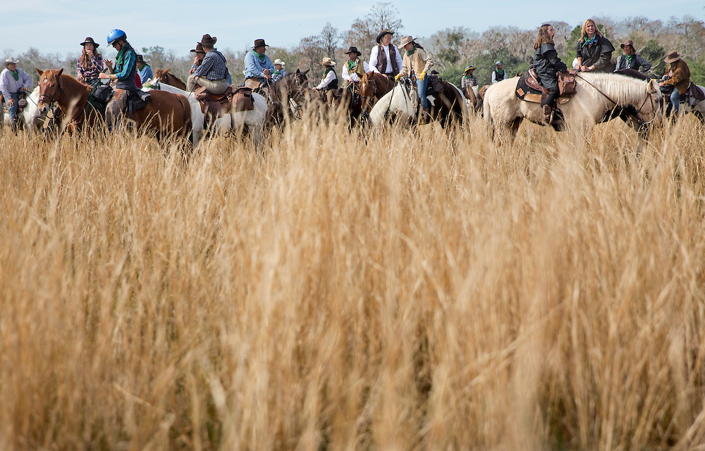 The Great Florida Cattle Drive '16 riders rest their horses in the tall grasses of  Kenansville.  The riders traveled from as far away as Germany, England, South America, California, North Carolina, Texas, Tennessee and nearby states like Georgia and Alabama. <br />