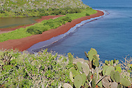 Rábida island, Galapagos, Ecuador.