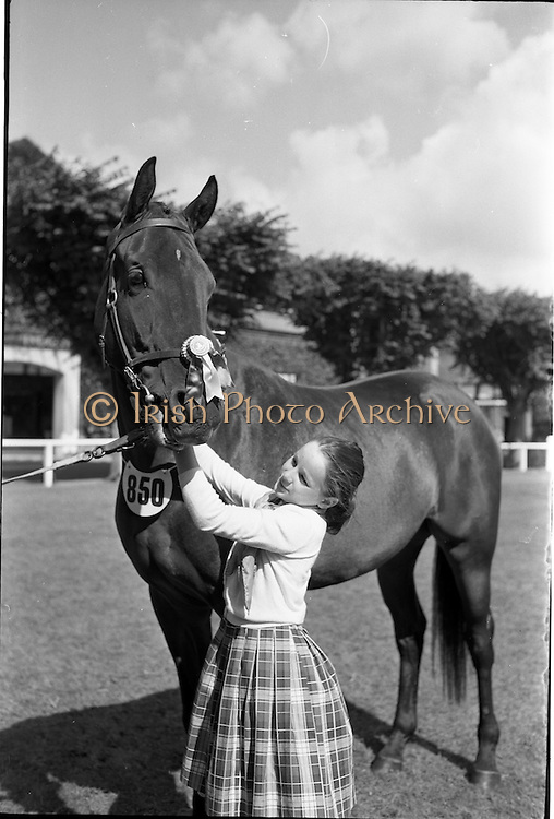 """08/08/1962<br /> 08/08/1962<br /> 08 August 1962 <br /> Dublin Horse show at the RDS, Ballsbridge, Dublin, Wednesday. Image shows 11 year old Mary O'Driscoll of Belvedere Stud, Donaghadee, Co. Down with her mothers 3 year old gelding """"Hypur"""", winner of the Anthony Maude Cup at RDS Show."""