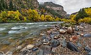 Fall foliage along the Colorado River at Glenwood Springs in the Colorado Rockies, USA