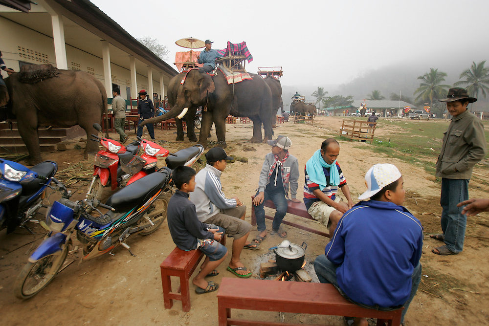 Laotians look on as mahouts attend to their elephants at second annual Elephant Festival in Paklay, Laos, Thursday, Feb. 14, 2008.