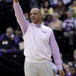 December 10, 2011; Baton Rouge, LA; LSU Tigers head coach Trent Johnson against the Boise State Broncos during the first half of a game at the Pete Maravich Assembly Center.  Mandatory Credit: Derick E. Hingle-US PRESSWIRE