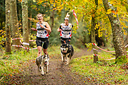 Female competitor in canicross class during the WSA Dryland World Championship 2019 at Firle Country Estate in the South Downs National Park, Lewes, Sussex, United Kingdom on 17 November 2019.