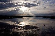 The Delta near Discover Bay, December 14, 2009.