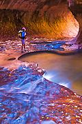 Hiker at the Subway along North Creek, Zion National Park, Utah USA