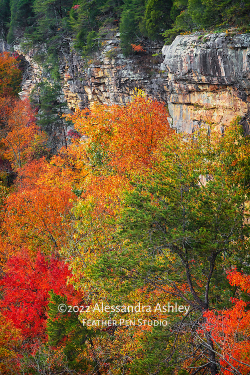 Autumn view of rocky canyon above Little River, which flows through the Appalachian foothills at Little River Canyon National Preserve.  Near Mentone, Alabama.
