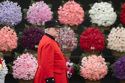 © licensed to London News Pictures. LONDON, UK  23/05/2011. A Chelsea pensioner walks past a floral display at the 2011 RHS Chelsea Flower Show. The show held each year in the grounds of the Royal Chelsea Hospital and organised by the Royal Horticultural society opens to the general public tomorrow and is already sold out. Please see special instructions for usage rates. Photo credit should read CLIFF HIDE/LNP