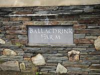 Ballschrink Farm