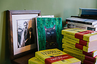 """ROME, ITALY - 21 FEBRUARY 2020: A painting of a cat drawn by Italian novelist and essayist Sandro Veronesi's son (center), a portrait of Mr Veronesi's parents (left) and a pile of books, including his latest novel """"Il Colibrì"""" (2019) are seen here in his studio in Rome, Italy, on February 21st 2020.<br /> <br /> In 2006 Sandro Veronesi won the Strega Prize, the most prestigious Italian literary award, with his book """"Caos Calmo"""". His latest novel is """"Il Colibrì"""" (2019)."""