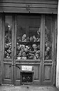 Restauri Artistici Squatriti dal 1954