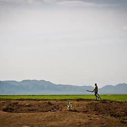 Dikes and levees have been built to help manage and control the seasonal rainfall and reduce the possibility of famine.