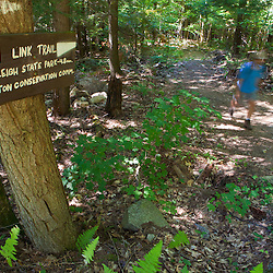 A hiker on the Link Trail (a.k.a Lincoln Trail) to Mount Kearsarge in Sutton, New Hampshire. Part of the Sunapee - Ragged - Kearsarge Greenway.