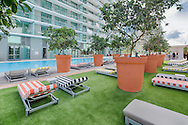 Fruit trees provide poolside shade and create a contemporary rooftop grove supplementing ingredients for mixology with a fresh twist.