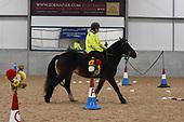 Class 05 - Novice Horse