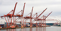 shipping cranes sit idle waiting for a ship to come in to the port of Seattle, WA, USA