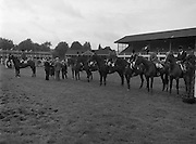 07/08/1980<br /> 08/07/1980<br /> 07 August 1980<br /> R.D.S. Horse Show: John Player Top Score Competition, Ballsbridge, Dublin.