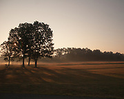 Early morning in Manassas National Battlefield Park.
