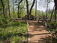 Rustic benches at the Hallett Nature Sanctuary in Central Park
