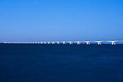 De Zeelandbrug bij blauw avondlicht (blue hour). De 5 km lange Zeelandbrug verbindt Noord-Beveland met Schouwen-Duiveland.