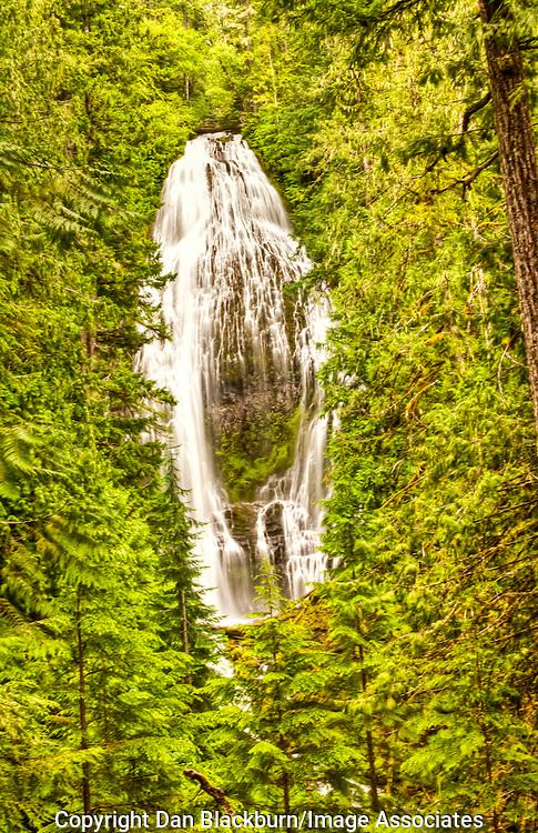 Proxy Falls in Full Flow in Oregon