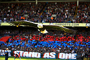 Crystal Palace FC eagle during the Premier League match between Crystal Palace and Hull City at Selhurst Park, London, England on 14 May 2017. Photo by Andy Walter.