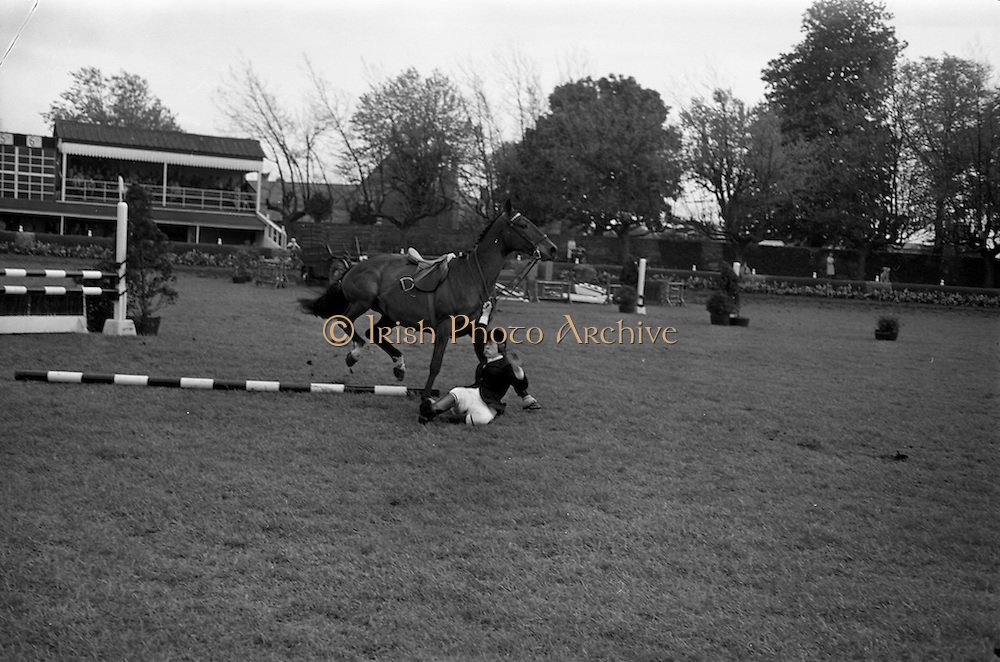 08/05/1964<br /> 05/08/1964<br /> 08 May 1964<br /> R.D.S. Spring Show Ballsbridge Dublin, Championship Showjumping, Miss P. McKee, Falling from her horse &quot;Desilv&quot;, during the Championship Jumping Event of the Dublin Spring Show.
