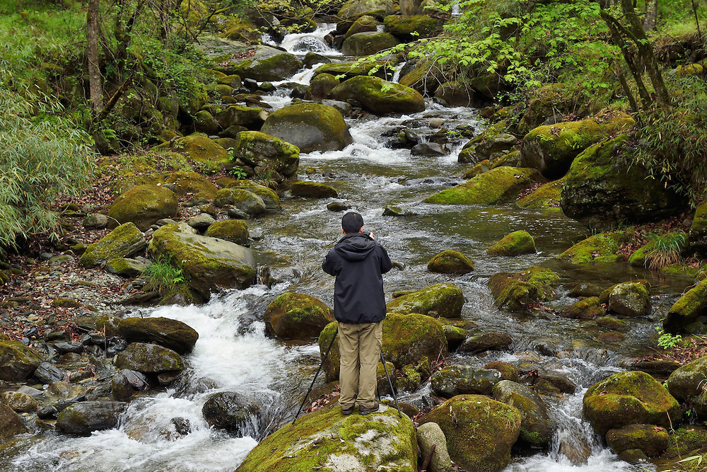 Nature photographer Wu Ying, photographing running water, Tangjiahe National Nature Reserve, NNR, Qingchuan County, Sichuan province, China
