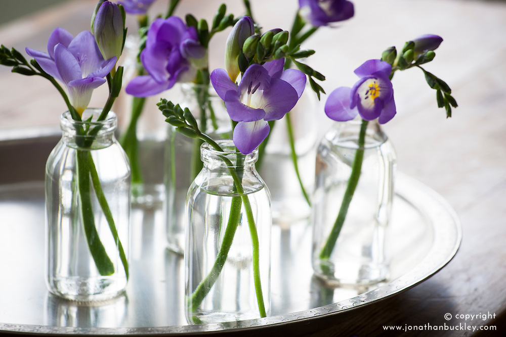 Freesias in clear mini milk bottle glass vases